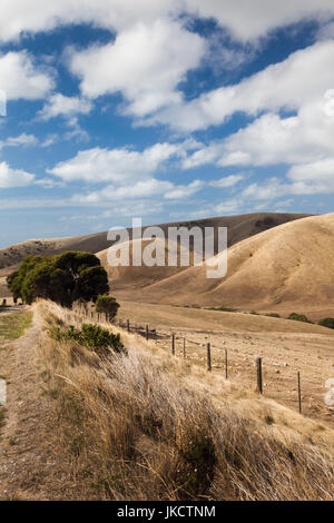 Australia, South Australia, Fleurieu Peninsula, Rapid Bay, landscape - Stock Photo
