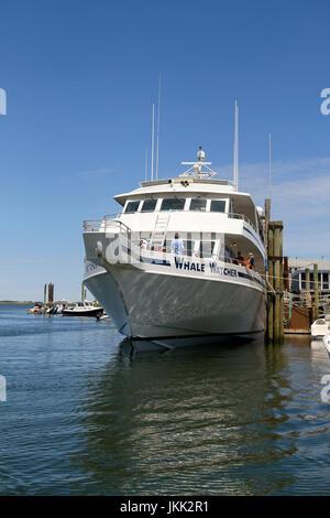 Whale Watcher, Barnstable Harbor, Barnstable, Cape Cod, Massachusetts, United States, North America - Stock Photo