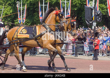 The Queens Cleveland Bays on the Mall for Trooping the colour - Stock Photo