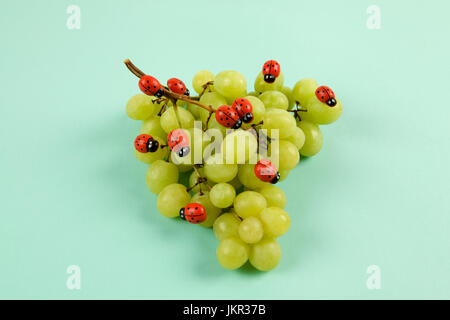 Invasion of ladybugs on a bunch of grapes. Vibrant color turquoise or violet background. Minimal design still life - Stock Photo