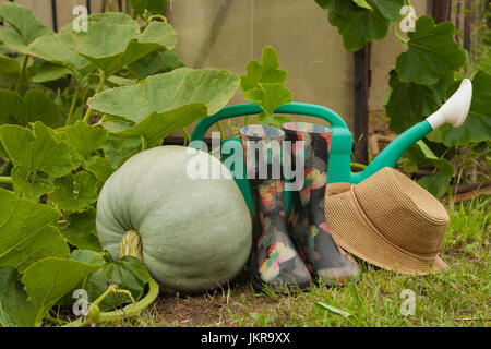 Fresh Pumpkin And Garden Tools On Vegetable Garden. Fresh Pumpkin, Rubber Boots, Wicker Hat, Green Watering Can. - Stock Photo