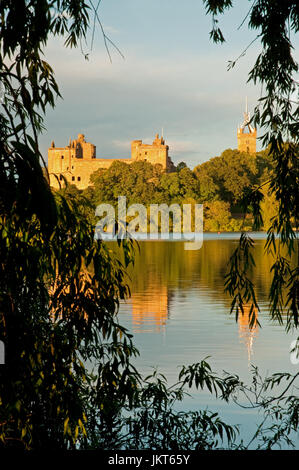 Linlithgow Palace framed by Weeping Willows - Stock Photo