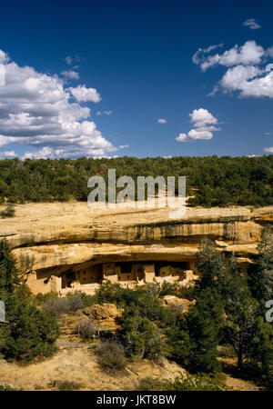 Spruce Tree House Anasazi cliff dwelling, Mesa Verde, Colorado: view east from trail near museum, 3rd largest cliff - Stock Photo