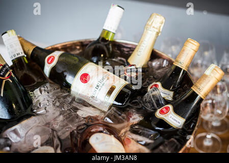 mixed bottles of gourmet wine in ice chiller bucket at bar - Stock Photo