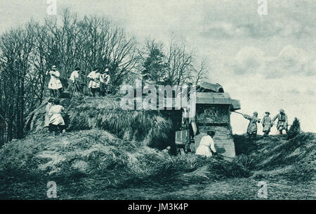 Women's land army at work on a rick, ww1 - Stock Photo
