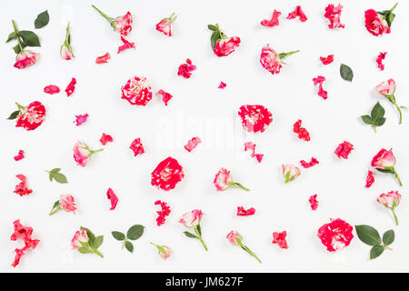 Floral pattern made of roses, green leaves, branches on white background. Flat lay, top view. - Stock Photo