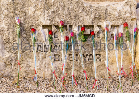 Roses placed by Bar and Bat Mitzvah candidates adorn the Babi Yar stone at the Valley of the Communities at Yad - Stock Photo