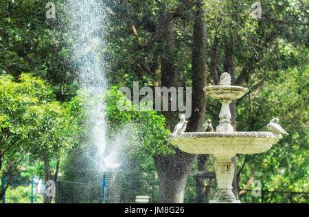 Water sprinkler system working in garden. - Stock Photo