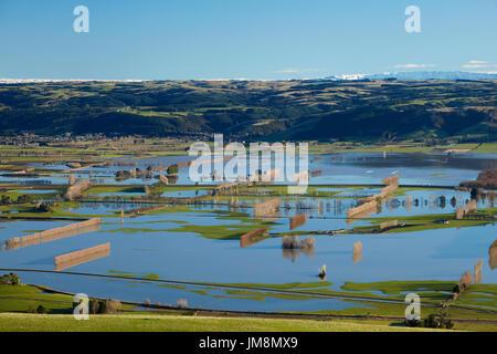 Flooded farmland on Taieri Plains, near Mosgiel, Dunedin, South Island, New Zealand - Stock Photo