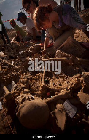 Anthropologists, volunteers and students work on the exhumation from the remains of 23 villagers executed by Francoist - Stock Photo