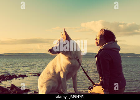 Young attractive girl with her pet german shepherd dog at a beach, colorised image - Stock Photo