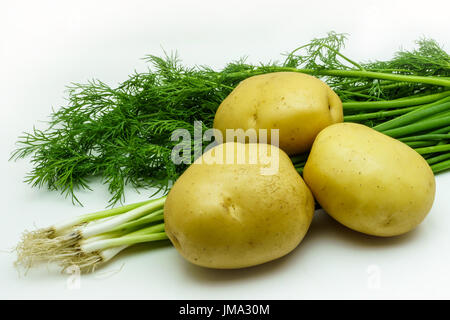 Assortment of fresh raw vegetables isolated on white background. Selection includes potato, green onion and dill - Stock Photo