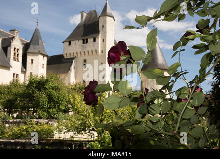 Chateau du Rivau et ses Jardins de Contes des Fees, Loire Valley - Stock Photo