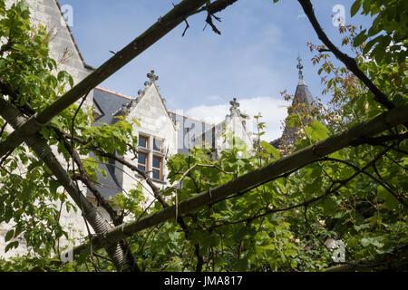 Chateau du Rivau et ses Jardins de Contes des Fees, Loire Valley - Stock Photo