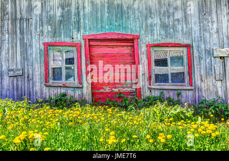 Red painted old vintage shed with yellow dandelion flowers in summer landscape field in countryside - Stock Photo