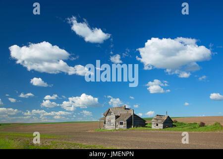 Abandoned homestead, Whitman County, Washington - Stock Photo