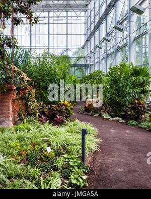 Berlin,Marzahn. Gardens of the World botanic garden,Gärten der Welt.Tropenhalle,Energy efficient Tropical glass - Stock Photo