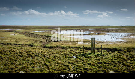 The coastal lowlands of England provide some of the largest natural salt marshes in the UK. Frampton Marsh on the - Stock Photo