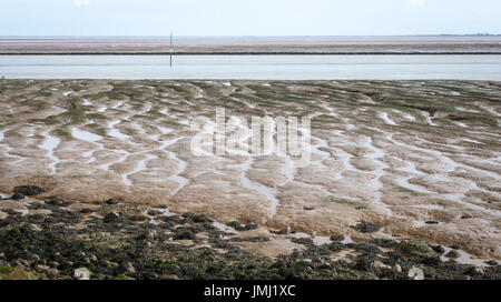 The coastal lowlands of England provide some of the largest natural salt marshes in the UK. Mudflats on The Wash - Stock Photo
