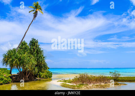 Tabuaeran, Fanning Island, Republic of Kiribati.Tabuaeran beach on the Fanning Island, Republic of Kiribati - Stock Photo