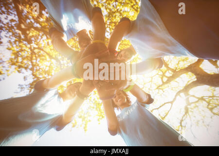 Directly below shot of volunteers forming hand stack  against tree - Stock Photo