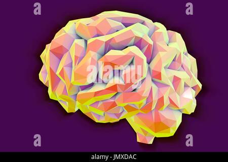 Human brain, low-polygonal computer illustration. - Stock Photo