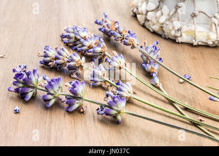 Display of Dried Lavender with a Seashell ornament in the background on a light oak Wooden Table - Stock Photo