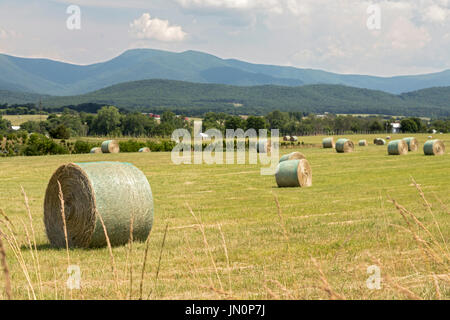 Luray, Virginia - A farm field in the Shenandoah Valley below the Blue Ridge Mountains and Shenandoah National Park. - Stock Photo