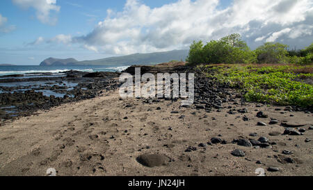 Galapagos Islands Landscape - Paisaje Islas Galápagos - Stock Photo