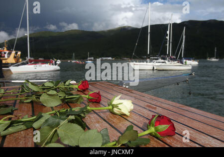 Roses aboard a boat taking part in a cross border flotilla on Carlingford Lough in memory of the crew of the Irish - Stock Photo