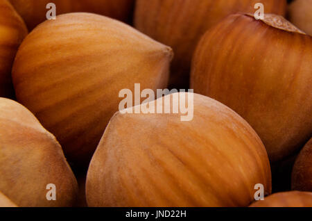 The heap of nuts; Macro photo; Focus on the nearest part - Stock Photo