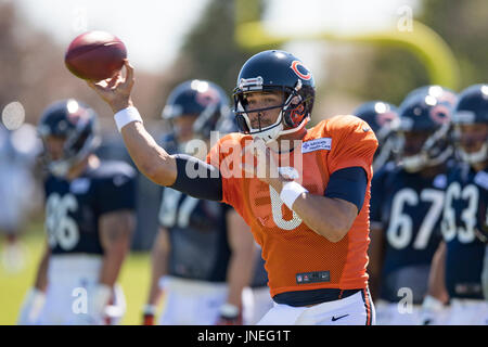 Bourbonnais, Illinois, USA. 29th July, 2017. - Chicago Bears #6 Mark Sanchez in action during training camp on the - Stock Photo