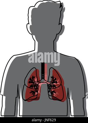 human silhouette respiratory system body anatomy - Stock Photo
