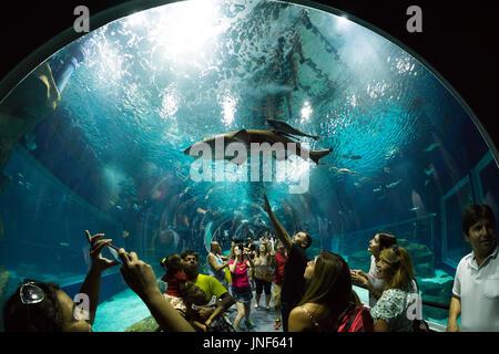 Tourists at Rio de Janeiro Aquarium - Aqua Rio - Stock Photo