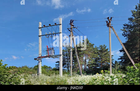 The standard mass production rural electric distributive transformer in forest. Sunny July day  panoramic landscape. - Stock Photo