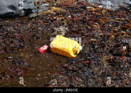 Plastic container and infamously discarded Coke can amidst kelp seaweed and shale washed up on beach in Dorset UK - Stock Photo