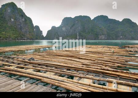 Halong Bay, Vietnam, pearl farm infrastructure - Stock Photo