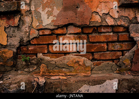 Old collapsing brick wall and plaster - Stock Photo