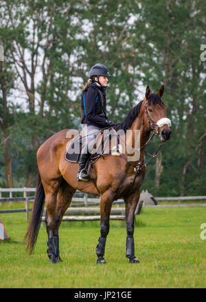 Young woman equestrian rider mounted on a young gelding horse during a training session for jumping competitions - Stock Photo