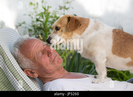Old man resting in garden and cute dog climb on his chest and kissing him. Pet love concept - Stock Photo