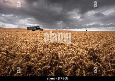 The dutch barn at Sixpenny Handley in Dorset - Stock Photo