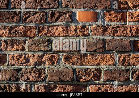 Natural Science, The old red brick wall, close-up - Stock Photo