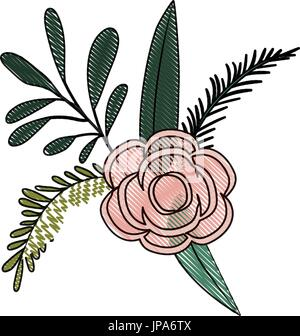 white background with colored crayon silhouette of branches and rose flower ornament - Stock Photo