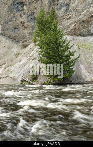 Firehole River, Yellowstone National Park, Wyoming, USA - Stock Photo