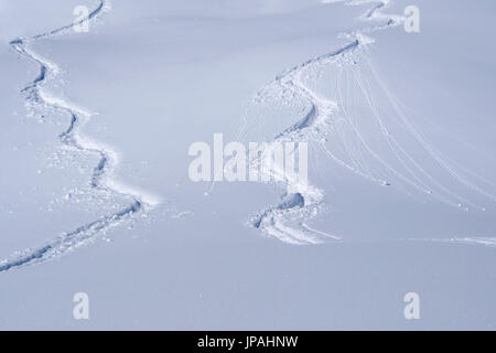 Tracks of winter sportsperson in the snow - Stock Photo