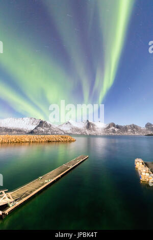 Northern lights on snowy peaks and icy sea along Mefjorden seen from the village of Mefjordvaer Senja Tromsø Norway - Stock Photo