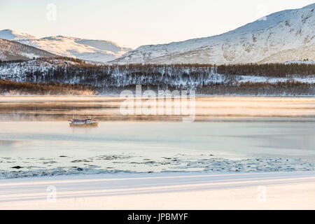 Winter sunlight in Senja,Norway,Europe - Stock Photo