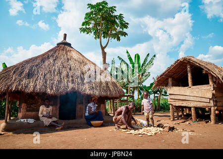 Traditional work in a tribal village of Africa, Queen Elizabeth National Park, Kasese, Rwenzururu sub-region, Western - Stock Photo
