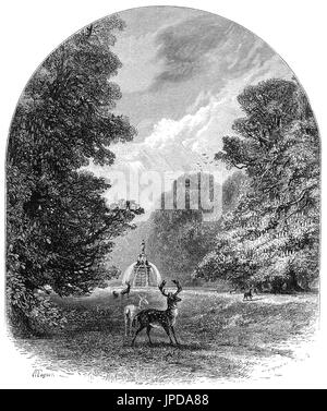1870: Fallow Deer in front of the Diana Fountain in Bushy Park, in the London Borough of Richmond upon Thames. The - Stock Photo