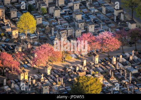 Aerial view of Montparnasse spring Cemetery in Paris, France - Stock Photo